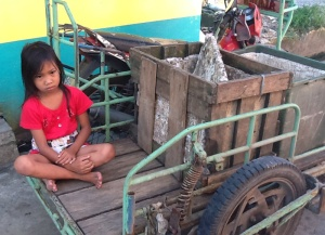 The five year old girl sitting on a tricycle